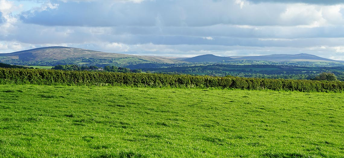 North Tawton View to Dartmoor